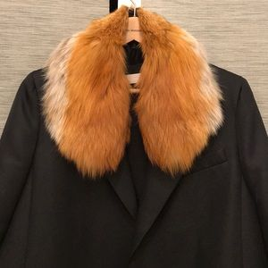 Red Fox 🦊 collar